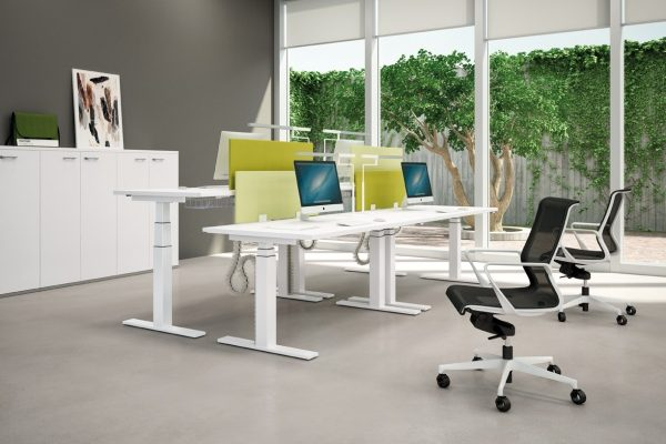 bureau-assis-debout-electrique-modul-photo-xxlarge-db2b2